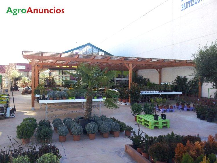 Venta y reparaci n de invernaderos y - Centro de jardineria madrid ...