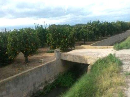 Campo de naranjos campo de naranjos en for Piscina municipal lliria